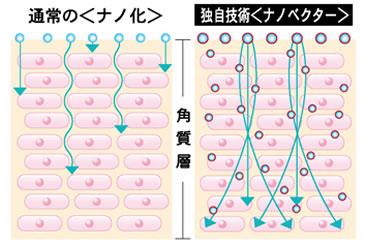 バイオキュー ナノベクトライゼィションプロセス